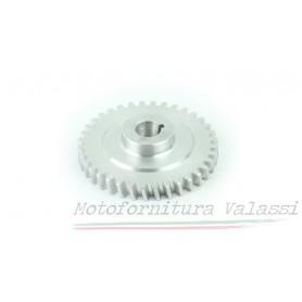 Ingranaggio dinamo Airone 250 49.500 - M2562/2 Parti dinamo e magnete59,00€ 59,00€